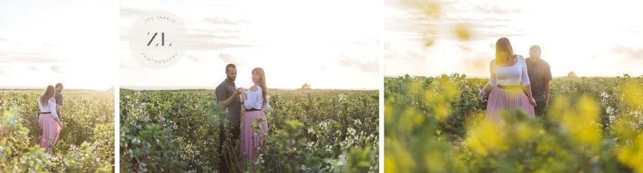 engaged couple in romantic sunset meadow