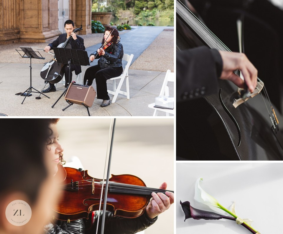 amethyst trio musicians for Palace of Fine Arts wedding, San Francisco