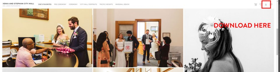 how to download images from wedding photography gallery