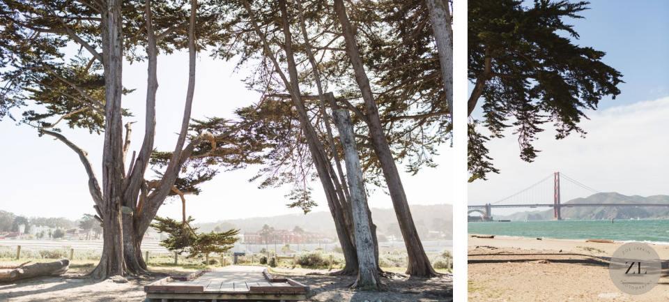 Crissy Field Cypress Grove ceremony space photos by Zoe Larkin Photography