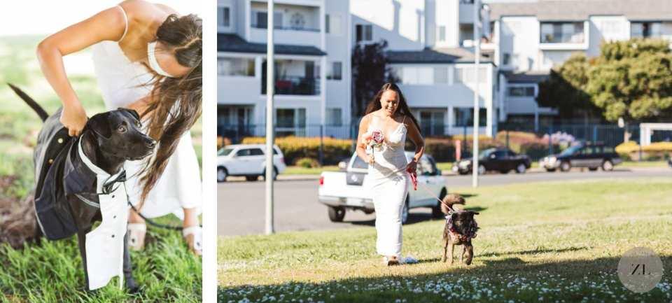 dogs at coronavirus wedding - dog with tux and lei