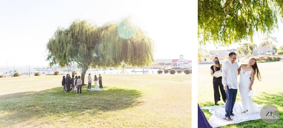wide angle photo of small wedding taking place under willow tree in point richmond, bay area