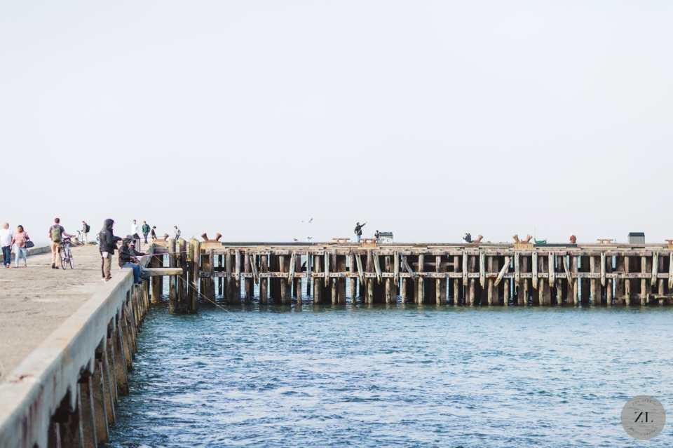torpedo wharf in San francisco's Crissy field