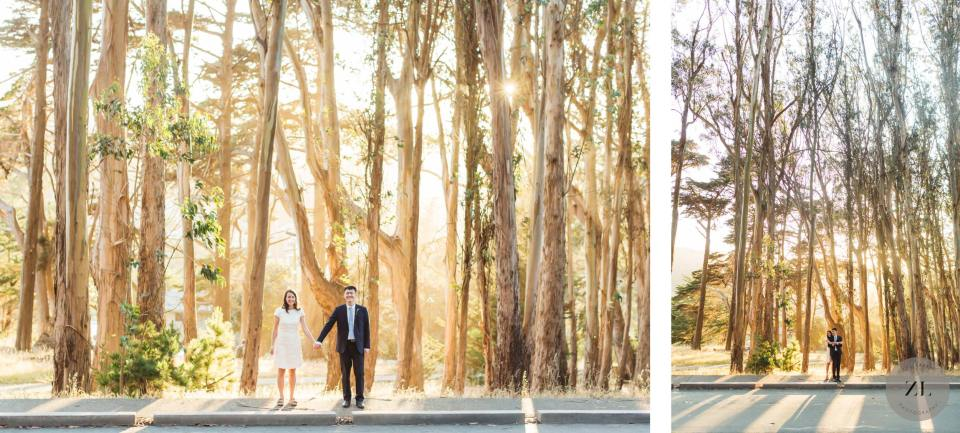 wedding photos on Liggett Avenue, right of Andy Goldsworthy's Wood Line on Lovers Lane