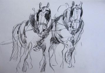 Kate Dicker's Illustration