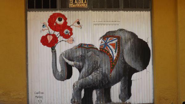 En este circo el llanto es silencioso canto, por Cristina Muñoz Lázaro