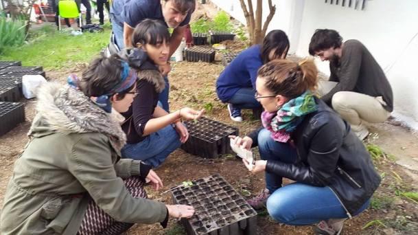Integrantes de ZOES en Verde plantando semillas en el huerto.
