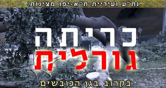פעילים פתחו במבצע גיוס משאבים להצלת גן הכובשים בדרום תל-אביב
