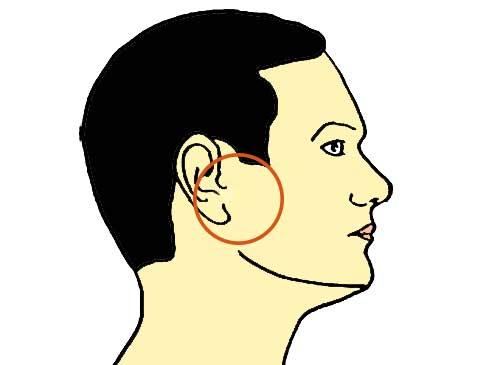 точка улучшающая слух