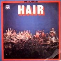 The Ray Bloch Singers - Hair (1969)
