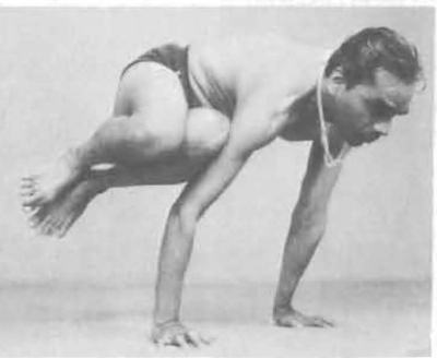 Parsva Konasana - BKS Iyengar