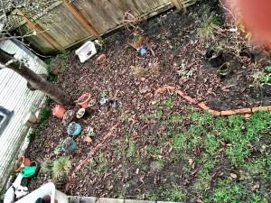 Muddy backyard