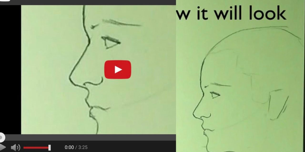 Drawing a Face in profile without reference