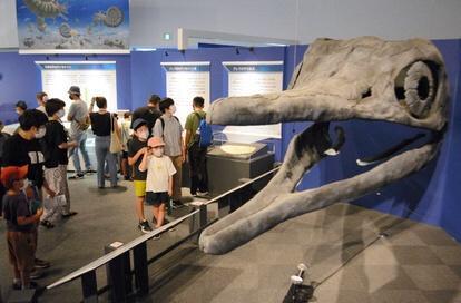 ショニサウルス 化石
