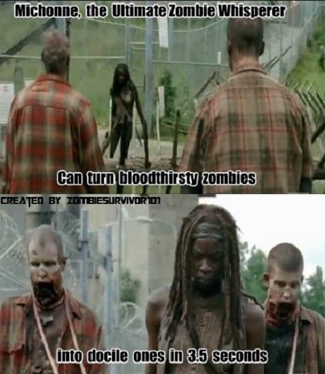The Walking Memes Zombiesurvivor101