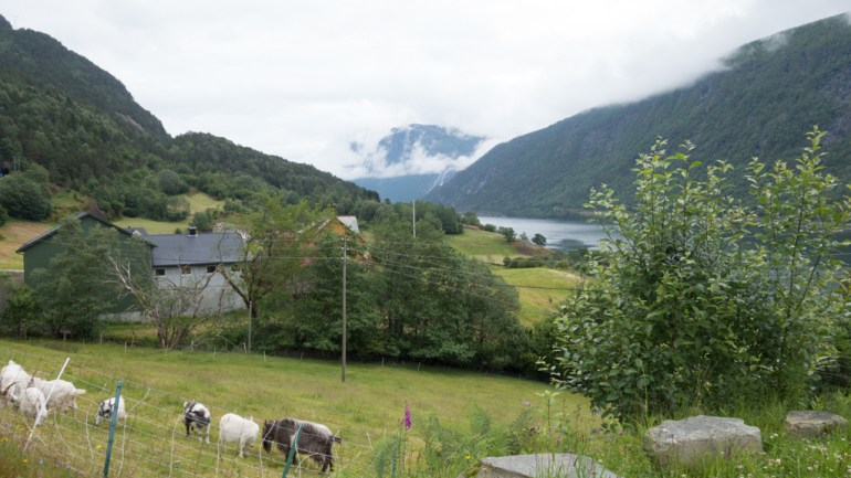 j09_norway_south_bicycle_touring_fun_09