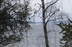 In this amateur photo provided by Sweden's armed forces and distributed by the TT News Agency on Sunday, Oct. 19, 2014, a partially submerged object is visible in the water at center, in the Stockholm archipelago, Sweden. The Swedish military said Sunday it had made three credible sightings of foreign undersea activity in its waters during the past few days amid reports of a suspected Russian intrusion in the area. (AP Photo/Swedish Armed Forces via TT News Agency) SWEDEN OUT