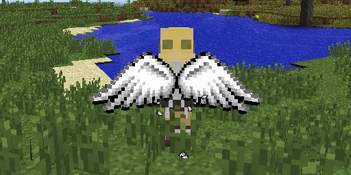 Cosmetic Wings Mod