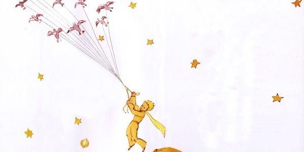 Vemos una linda caratula con un niño con traje de príncipe  muchas aves que vuelan en un cielo estrellado su nombre el principito