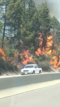 El incendio forestar alcanzó a la capilla.