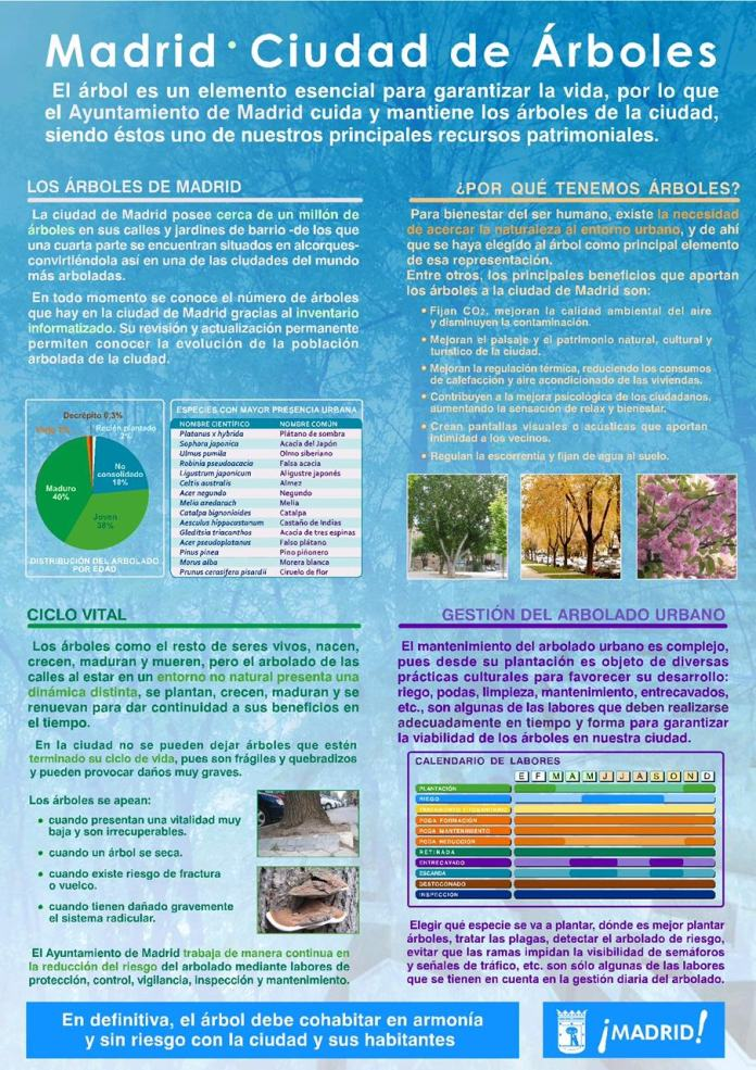 arboles-madrid