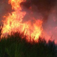 L'inquiétant devenir du feu