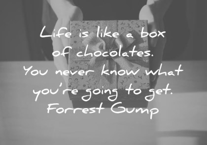 300 Inspiring Life Quotes That Will Change You  Forever  life quotes life is like a box of chocolates you never know what you re  going
