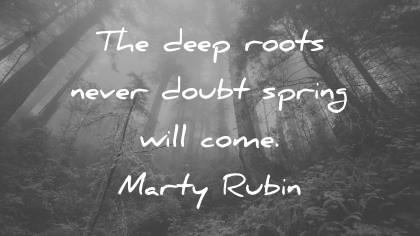 300 Trust Quotes  And Images  That Will Inspire You trust quotes the deep roots never doubt spring will come marty rubin wisdom  quotes