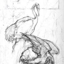2 craneswp copy