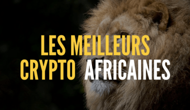 cryptomonnaies africaines