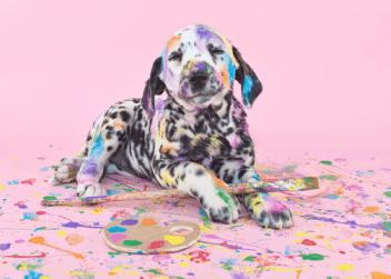 chien-peintre-loisir-creatif