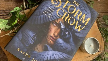 The Storm Crow (The ​Storm Crow #1) – Kalyn Josephson