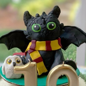 Harry Potter Toothless