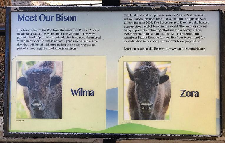 Wilma-Zora-sign
