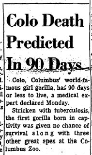 Front-page headline, Columbus Dispatch (March 11, 1963)
