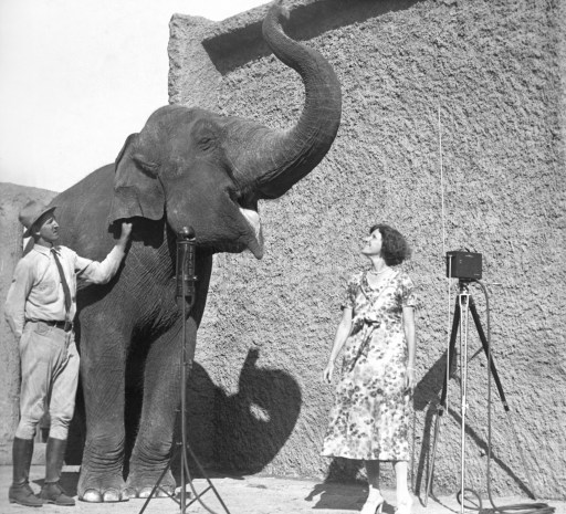 Keeper Charley Smith with elephant Queenie during a KFSD radio broadcast in 1930.