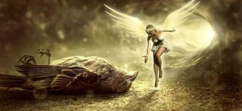 天使の妖精