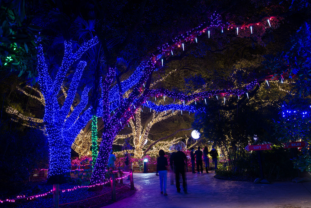 Zoo Lights Houston 2017