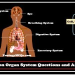 MCQs on Organ System Questions and Answers