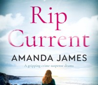 #BookReview – Rip Current by Amanda James @akjames61 @Bloodhoundbook