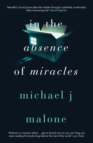 #Excerpt from The Absence of Miracles by Michael J.Malone @michaeljmalone1 @orendabooks @annecater #blogtour