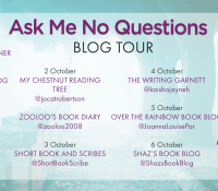 #BookReview of Ask Me No Questions by Louisa de Lange @paperclipgirl #AskMeNoQuestions #DSKateMunro @orionbooks