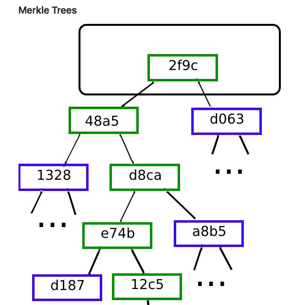 マークル木