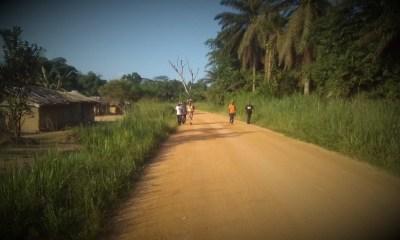 RDC : La Banque Mondiale décaisse 7,2 millions USD pour la réhabilitation de la route Dulia-Bondo 96