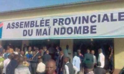 RDC : François Kaniki dénonce un candidat-sénateur «corrupteur» à Mai-Ndombe ! 22
