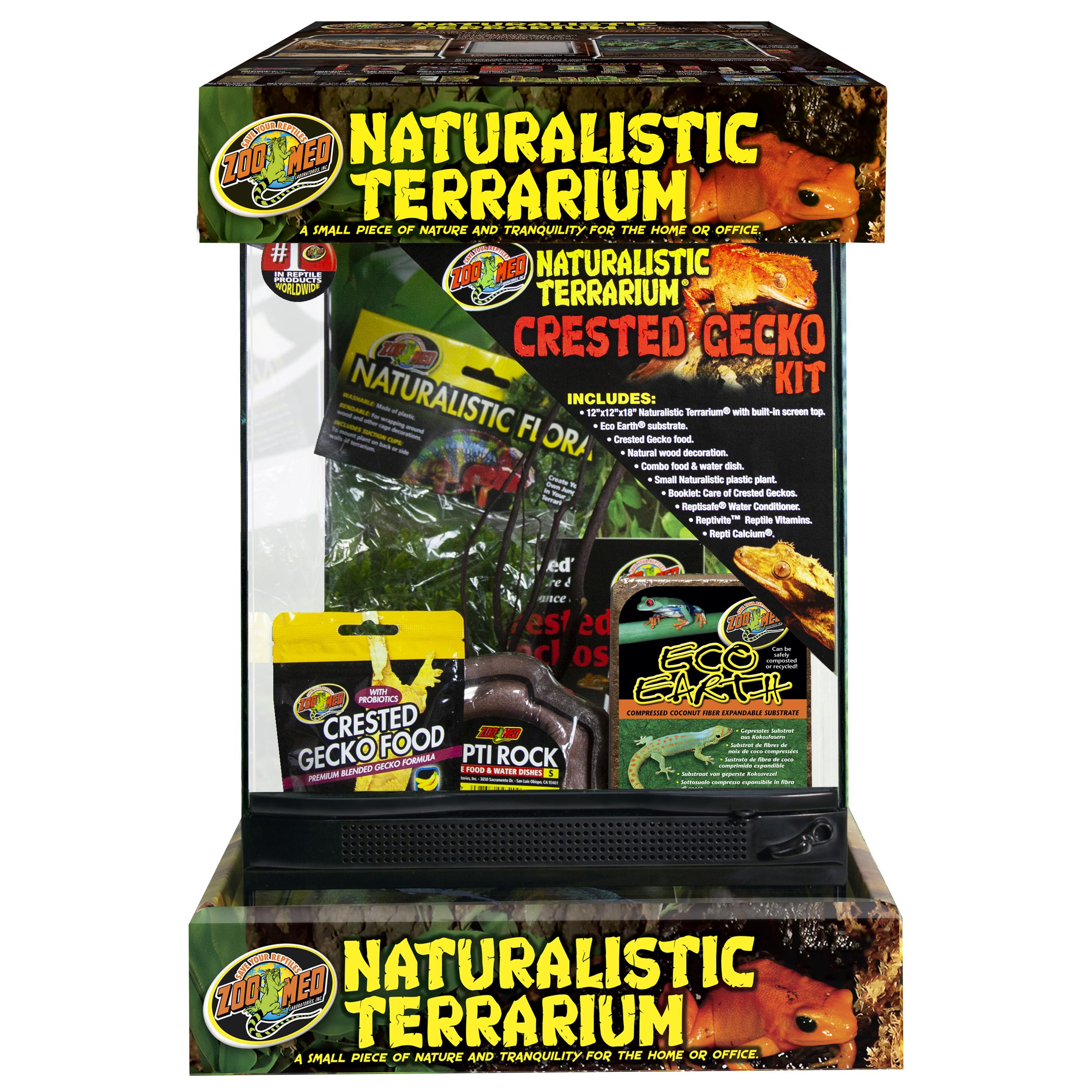 naturalistic terrarium crested gecko