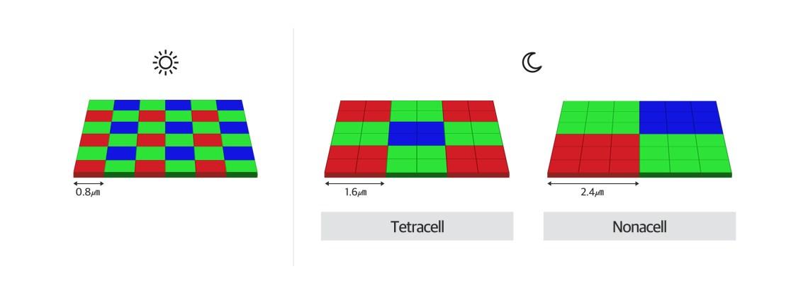Nona vs Tetra_v2