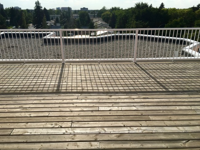#103, 9120 156 St Meadowlark Terrace condo3
