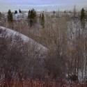 3215 130 Avenue Edmonton E4139440
