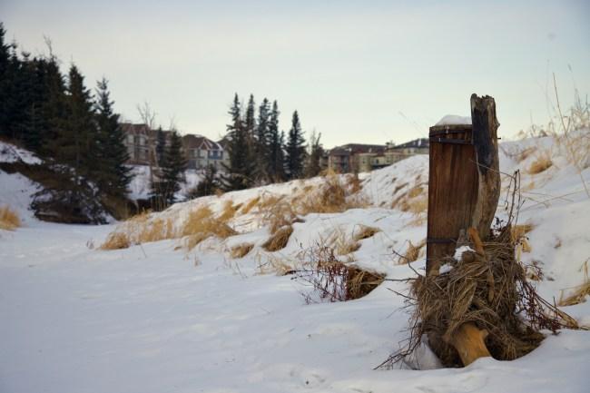 #6, 1641 James Mowatt Trail SW, Edmonton